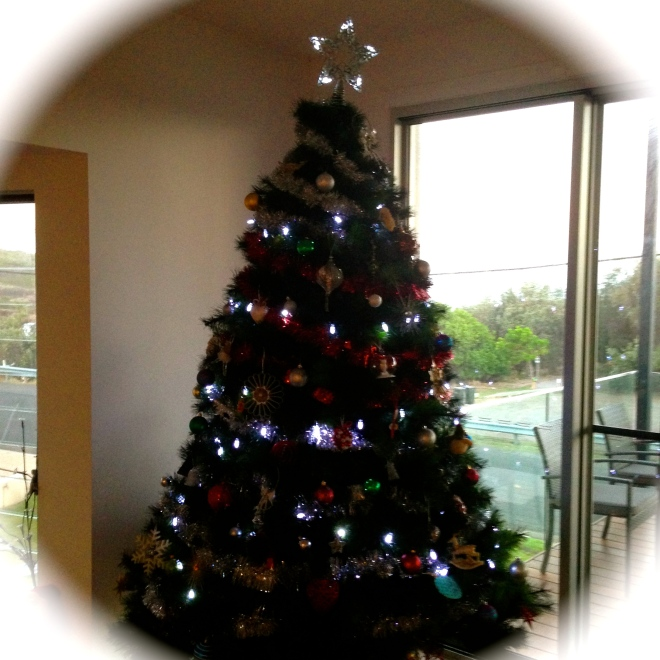 Our Christmas Tree 2014